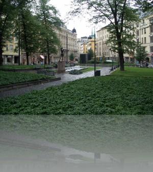Зелень Северной Европы