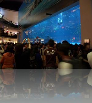 Самое большое в мире стекло в аквариуме. Made in Canada. Посмотреть можно в Дубай молле