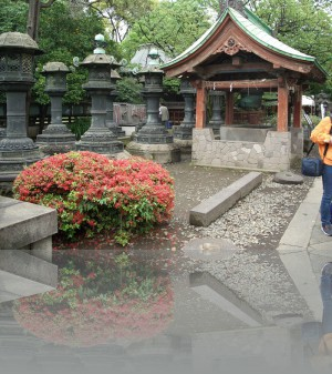 Маленьких храмов там тоже много