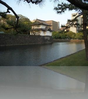 Ров у императорского парка. Сам дворец вглубине