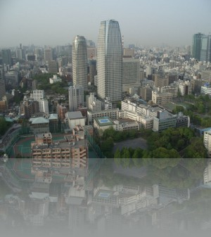 Токийский муравейник