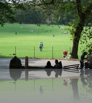Лужайки Центрального парка