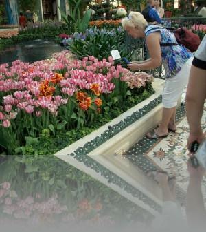 Лас Вегас- это цветочное царство