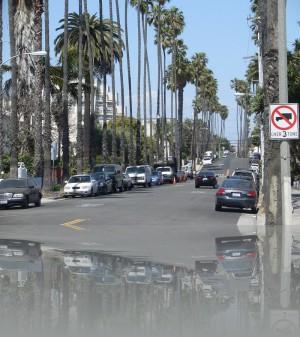 Пальмы-спички, как это по-калифорнийски