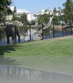 Слоны не настоящие. Из бетона