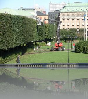 Деревья-кубики, сейчас такая мода в Стокгольме