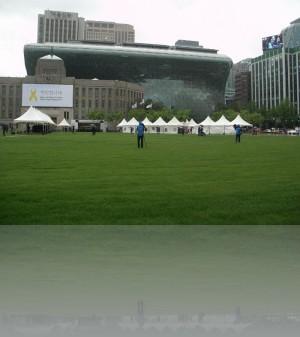 Сеульская площадь это большая пешеходная поляна с настоящей травой.